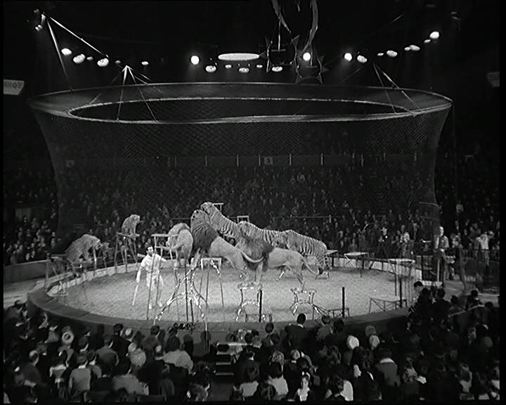 Bertram Mills' circus thrills crowds, London (1962)
