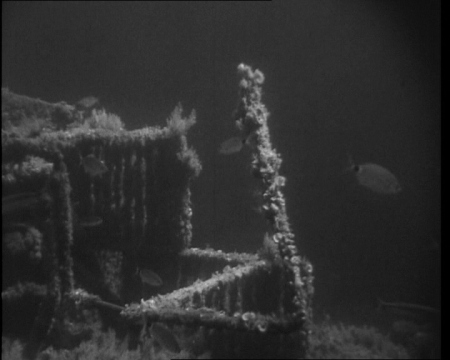 Subs aren't always required however, and these eerie underwater images of HMS Breconshire, sunk by German aircraft in 1942, were taken by a scuba diver. Click the still to view the film.