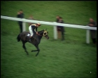 THE_GRAND_NATIONAL_2025_16_373